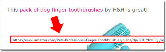Dog Toothbrush Amazon Link